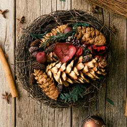 Noel Ecologique et decoration naturelle