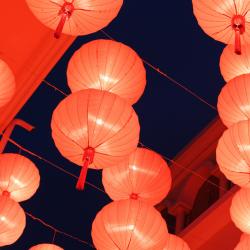 Bricolage du Nouvel an chinois