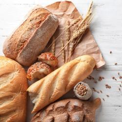 pain - mot du glossaire Tête à modeler. Définition et activités associées au mot pain.