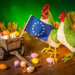 Les traditions de Pâques varient parfois d'un pays à un autre, ce dossier vous propose une sélection d'activités autour de Pâques pour découvrir les traditions des pays de la cimmunauté européenne.