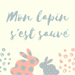 """""""Mon lapin s'est sauvé """" poésie , comptine qui peut être chantée et mimée. Une poésie à imprimer, à colorier. La poésie permet aux enfants d'enrichir leur vocabulaire,"""