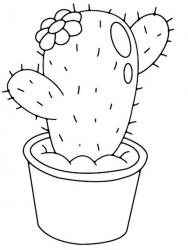 Personnaliser vos supports avec ce motif de cactus