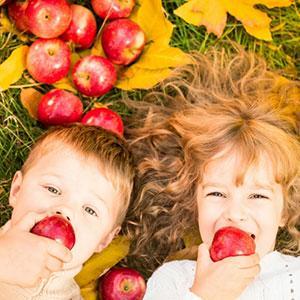 10 idées d'activités à faire avec votre enfant pour l'automne. Il n'y a que du l'embarras du choix pour occuper les petits loups.