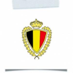 Activité blason foot Belgique mondial 2014