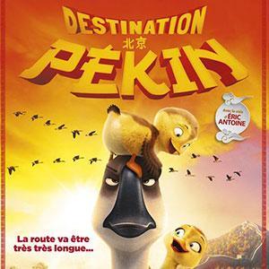"""Christopher jenkins signe un nouveau dessin animé sur le thème de l'aventure. Toujours aussi drôle, """"Destination Pékin"""" nous raconte le périple d'une oie casse-cou et farceuse, qui trop préoccupée par l'amusement, loupe le départ pour la grande migration."""