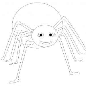 Coloriage araignée #05
