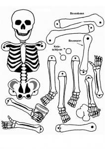 Coloriage squelette #09