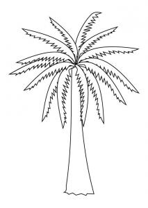 Palmier dessin #02