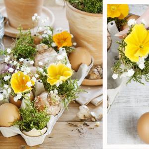 Composez un centre de table floral avec des coquilles d'oeufs. Une création pleine de poésie pour Pâques.