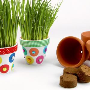 Dans cette activité nous allons décorer des pots en terre afin d'y faire pousser de la ciboulette.    Un atelier créatif nature qui plaira aux petits comme aux grands !
