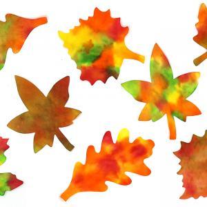 À travers ce nouveau tutoriel sur le thème de l'automne, découvrez une astuce facile qui consiste à reproduire les effets de couleurs des feuilles de cette belle saison.    Une activité créative avec de l'encre à dessiner appliquée s