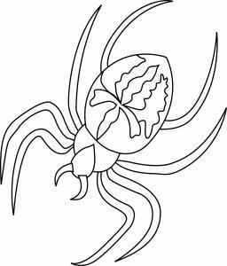 Voici un coloriage d'araignée très réaliste et assez effrayante ou fascinante selon les enfants !