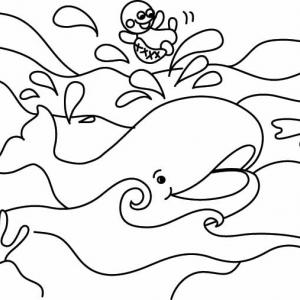 Baleine 04 - motif à imprimer