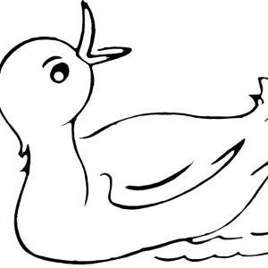 Canard 22 - motif à imprimer