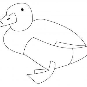Canard 26 - motif à imprimer