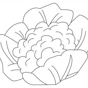 Chou-fleur 01 - motif à imprimer