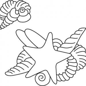 Etoile de mer 02 - motif à imprimer