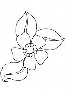 Fleur 007 - motif à imprimer
