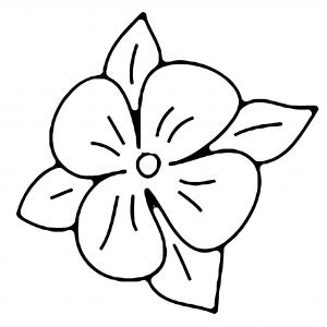 Fleur 016 - motif à imprimer