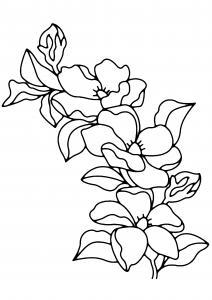 Fleurs 009 - motif à imprimer