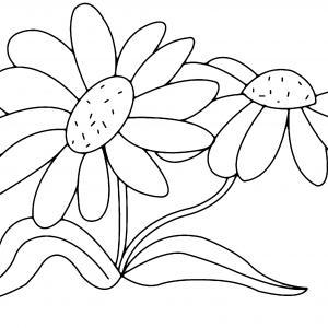 Fleurs 011 - motif à imprimer