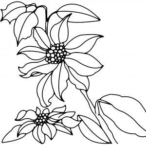 Fleurs 013 - motif à imprimer