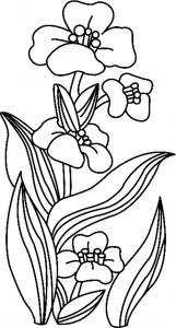 Fleurs 018 - motif à imprimer