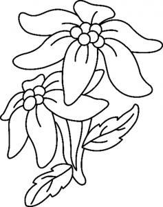 Fleurs 033 - motif à imprimer