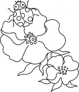 Fleurs et coccinelles 01 - motif à imprimer