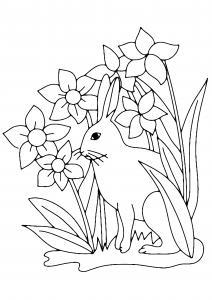 Fleurs et lapin 01 - motif à imprimer