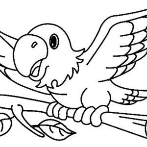 Perroquet 02 - motif à imprimer