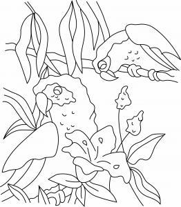 Perroquet 03 - motif à imprimer