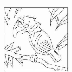 Perroquet 04 - motif à imprimer