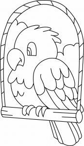 Perruche 03 - motif à imprimer