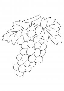 Raisins 02 - motif à imprimer