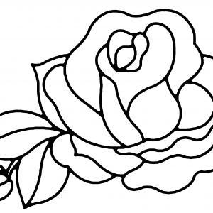 Rose 01 - motif à imprimer