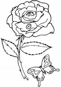 Rose 06 - motif à imprimer