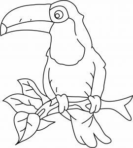 Toucan 03 - motif à imprimer