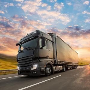 camion - mot du glossaire Tête à modeler. Un camion est un véhicule. Définition et activités associées au mot camion.