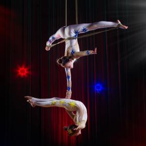 Acrobate : Mot du glossaire Tête à modeler. Un acrobate est un artiste qui exécute des exercices physiques de force, d'adresse ou périlleux.