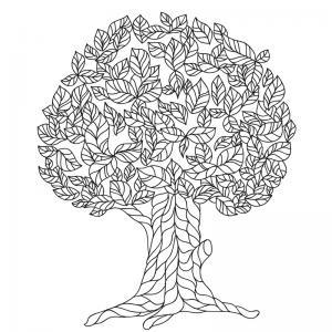Un coloriage arbre pour tous les enfants qui aiment la nature et les arbres. Page 2