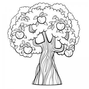 Un coloriage arbre pour tous les enfants qui aiment la nature et les arbres. Page 8