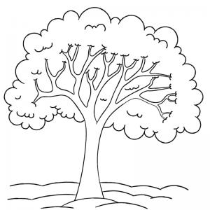 Un coloriage arbre pour tous les enfants qui aiment la nature et les arbres. Page 9