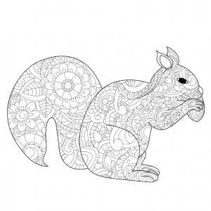 Voici un coloriage écureuil à imprimer gratuitement. Un dessin d'écureuil à imprimer pour tous les petits amoureux des animaux de la forêt. Page 09