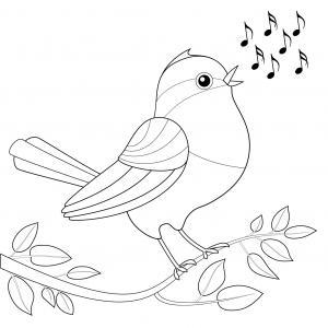 Imprimer le coloriage de l'oiseau et de la branche  Un coloriage parfait pour le Printemps