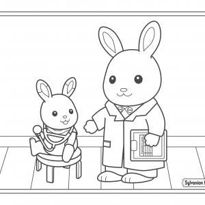 bébé lapin se fait soigner chez le docteur de Sylvania
