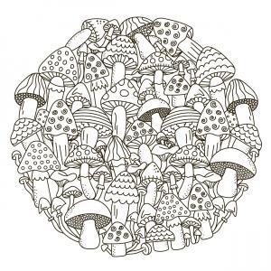 Voici un coloriage d'un champignon à imprimer gratuitement. Un joli dessin à colorier sur le thème de l'automne et de la nature. Modèle 07