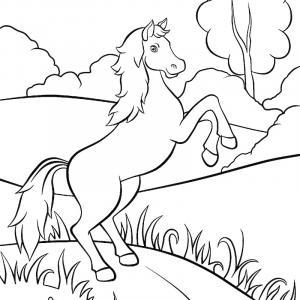Coloriage d'un cheval à imprimer gratuitement pour les amoureux de l'équitation.