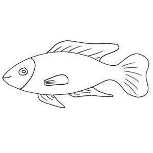 Imprimer le coloriage d'un poisson d'avril 2. Un poisson à imprimer pour le 1er avril