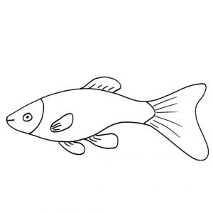Imprimer le coloriage poisson d'avril 8. Un poisson à imprimer pour le 1er avril